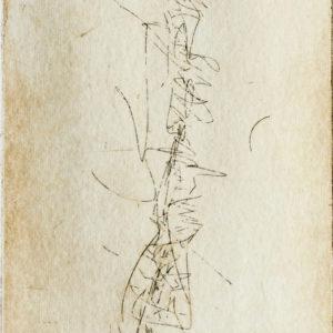«Backbone III» (detalle)
