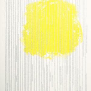 """Proceso IV"", 2013, Serie: Procesos, Grapas sobre papel de algodón, 57 x 76 cm."
