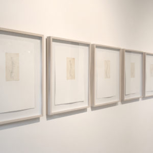 """Backbone I, II, III, IV, V, VI, VII"", 2010, Serie: Sin Título, Grabado: Agua Fuerte sobre papel de algodón, 28.5 x 38 cm."