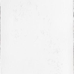 «Laberinto Interno IV», 2014, Serie: Laberintos, Grabado: Intaglio sobre papel de algodón, 57 x 76 cm.